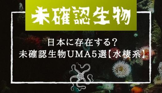 日本に存在する?未確認生物UMA5選【水棲系】