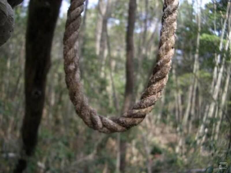 青木ヶ原樹海に吊るされた縄