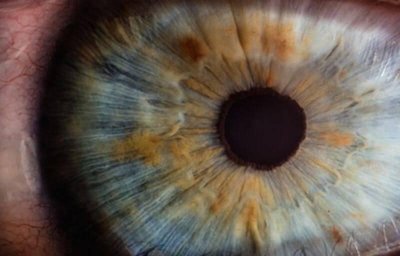 見透かす瞳