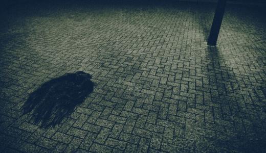 【霊体験】年末年始に遭遇した「見知らぬ気配」と「不気味な夢」のお話。