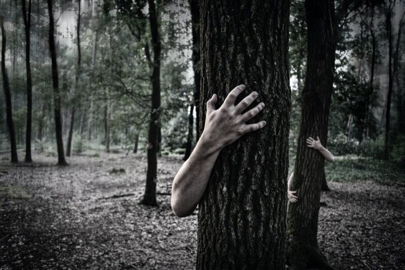 木に寄生する地縛霊