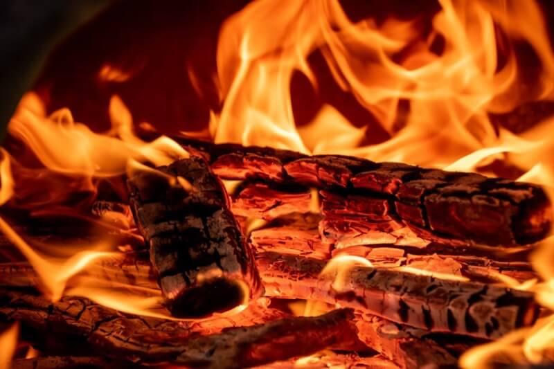 炎で燃える木